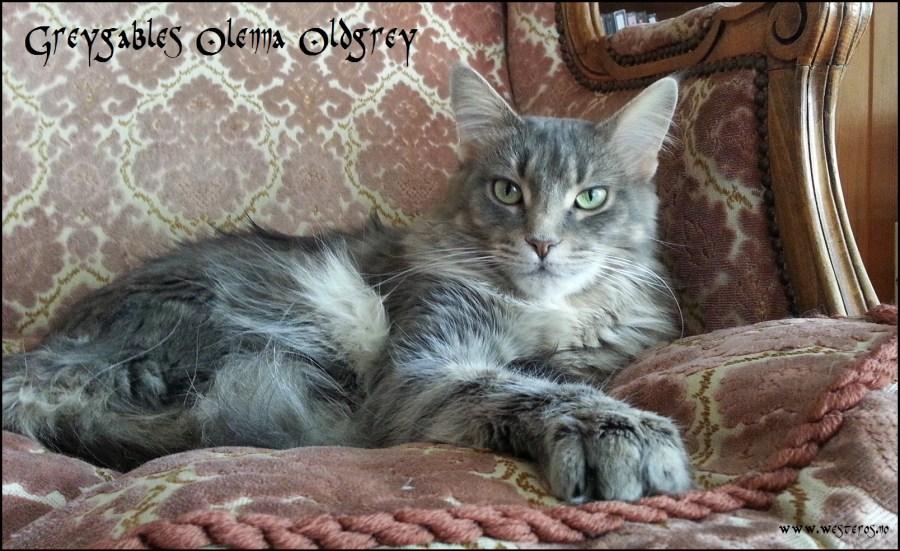 Olenna 3 years old