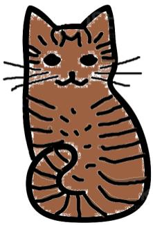 Katt-tabby-3