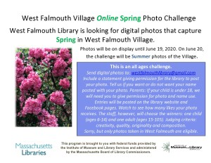 Spring Online Photo Challenge is On!