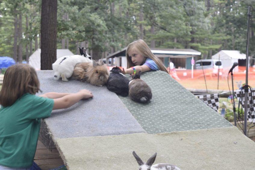 Bunny race! (courtesy - Janet Vahid)
