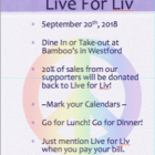Live for Liv Fundraiser.