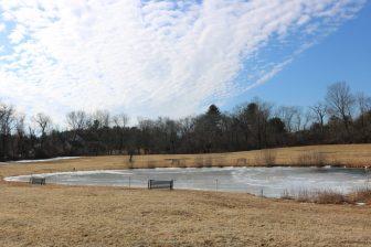 The pond is spring fed, according to Beattie. PHOTO BY JOYCE PELLINO CRANE