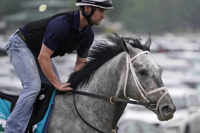 'Formidable group' of horses finish Triple Crown at Belmont