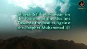 Position Towards Insults Against the Messenger