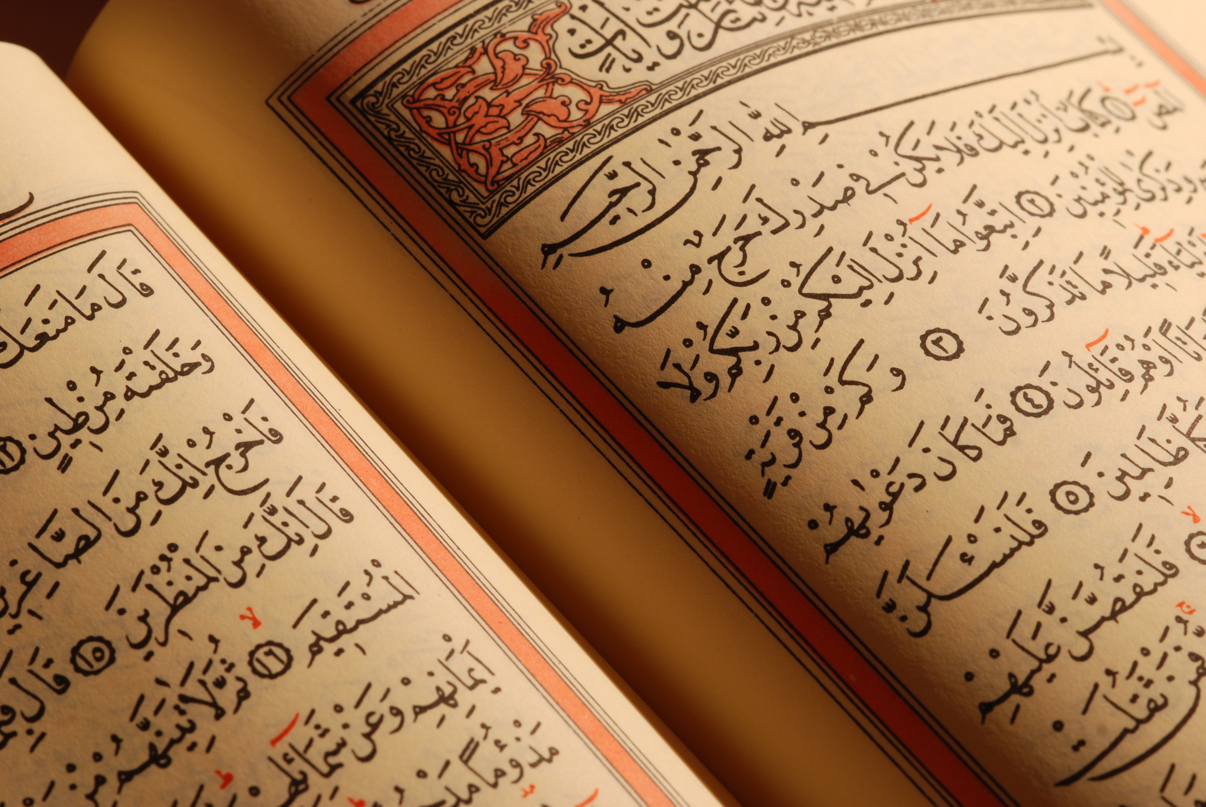 [Read] When you Read Quran – Fawaz al-Madkhali