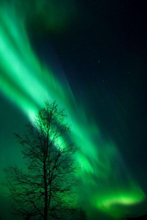 Can You See Northern Lights Alaska