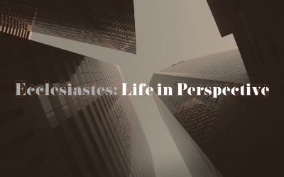 ECCLESIASTES: LIFE IN PERSPECTIVE – God in Perspective | Ryan Falls