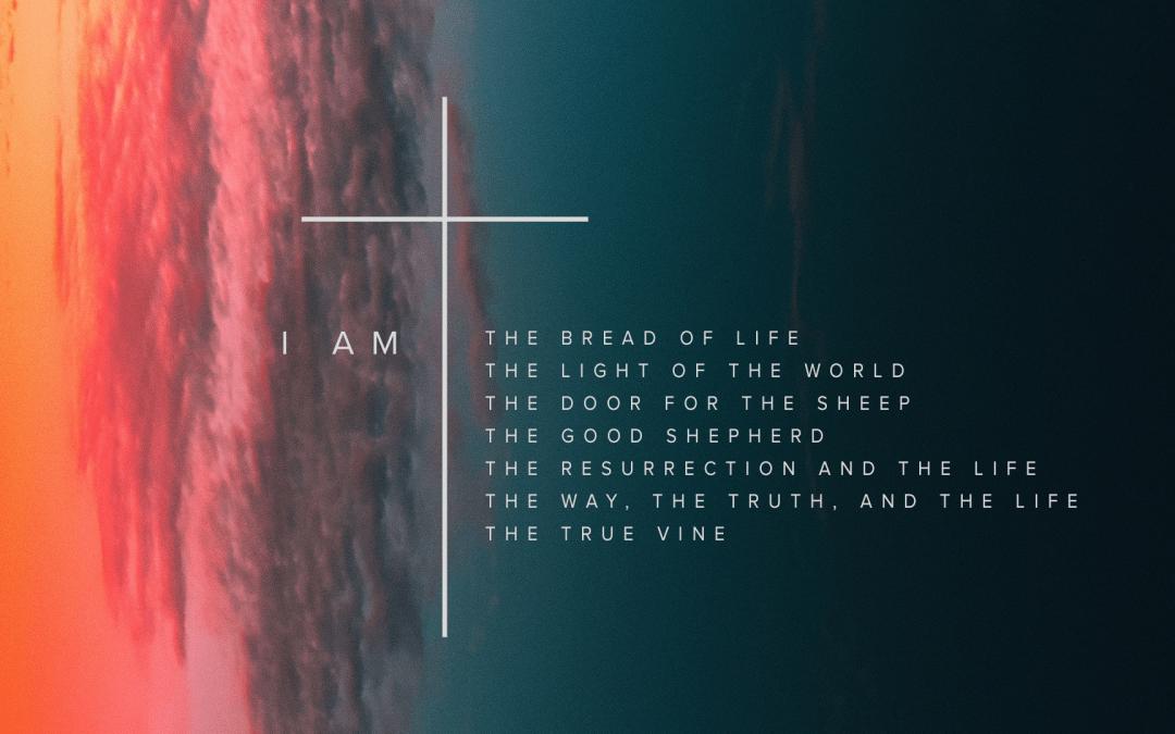 I AM: The True Vine | Ryan Falls