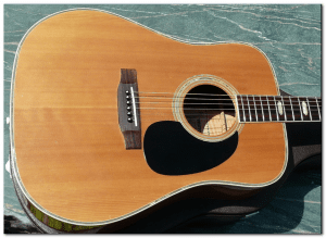 westone w40 acoustic body front