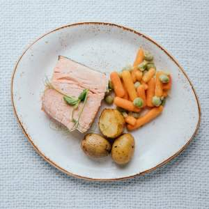 Westreme Kids Healthy Mini Salmon Fillet