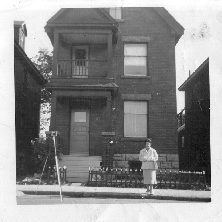 1960 238 primrose