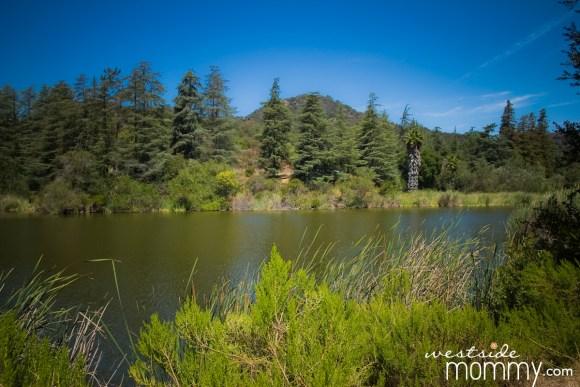 FranklinCanyon_hike_Lake