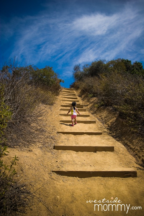 FranklinCanyon_hike_stairs