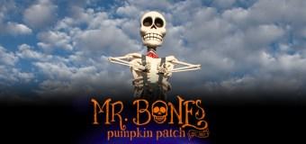 Culver City's Mr. Bones Pumpkin Patch opens Oct. 1st