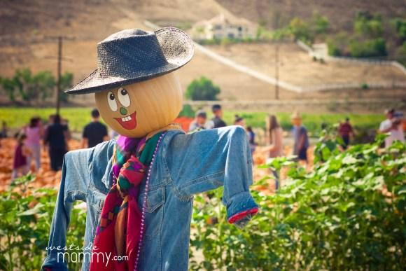 wsm_underwood2016_scarecrow