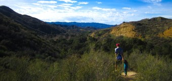 Placerita Canyon's Ecology Trail is kid-friendly and located near Santa Clarita