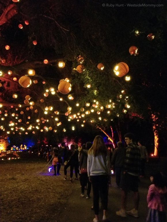 Decorated Pumpkin Tree Nights of the Jack Event in Calabasas, California Post on WestsideMommy.com