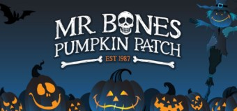 Interview with Lyra Marble, owner of Mr. Bones Pumpkin Patch