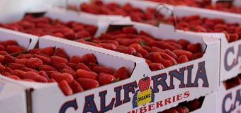 California Strawberry Festival, May 18+19 in Oxnard