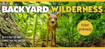 Backyard Wilderness 3D