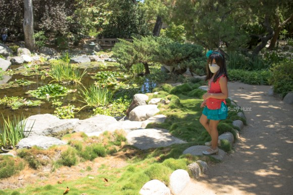 Storrier Sterns Japanese Garden in Pasadena. Girl with facemask checking out the pond.