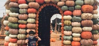 Mr. Bones Pumpkin Patch Visit 2021