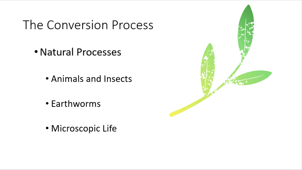 Building Healthy Soil - The Conversion Process