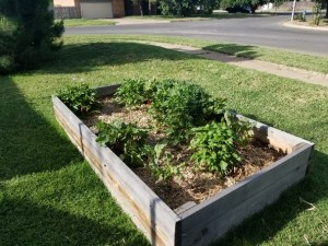 Building Grow Beds - Raise Bed our front yard