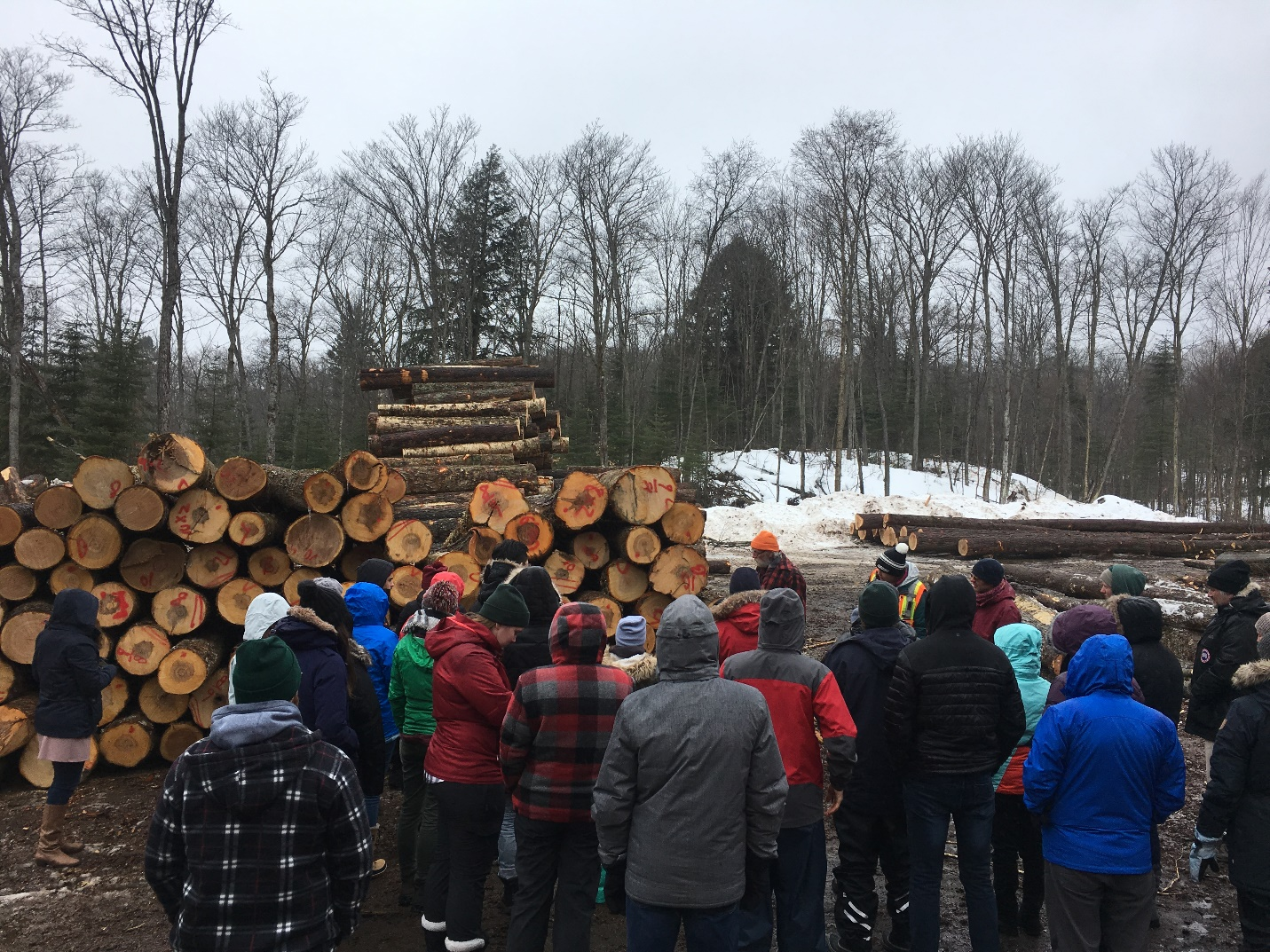 U of T Students Visit the French-Severn Forest
