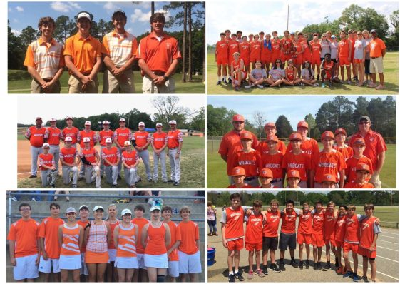 Westwood Student Athletes Enjoying Success This Spring