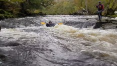 gordon2 - River Wharfe 14th October 2012
