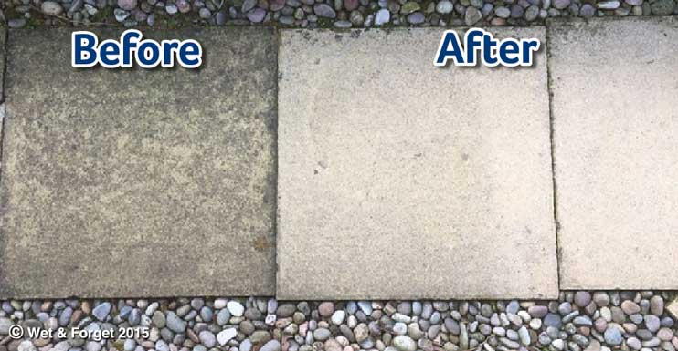 patio cleaning moss mould and algae