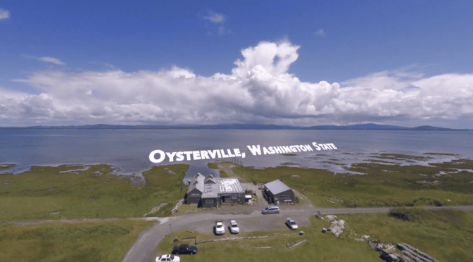 Pacific County works hard to destroy the last oyster farm in Oysterville