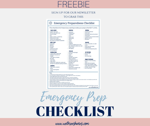 Did you know that the Red Cross has estimated that over half of Americans have experienced a power loss for 3 days or an emergency evacuation yet only 12% had made adequate disaster preparedness steps? Emergency Preparedness is crucial so I have put together a checklist for next level prepping to keep your family safe. | We Three Shanes