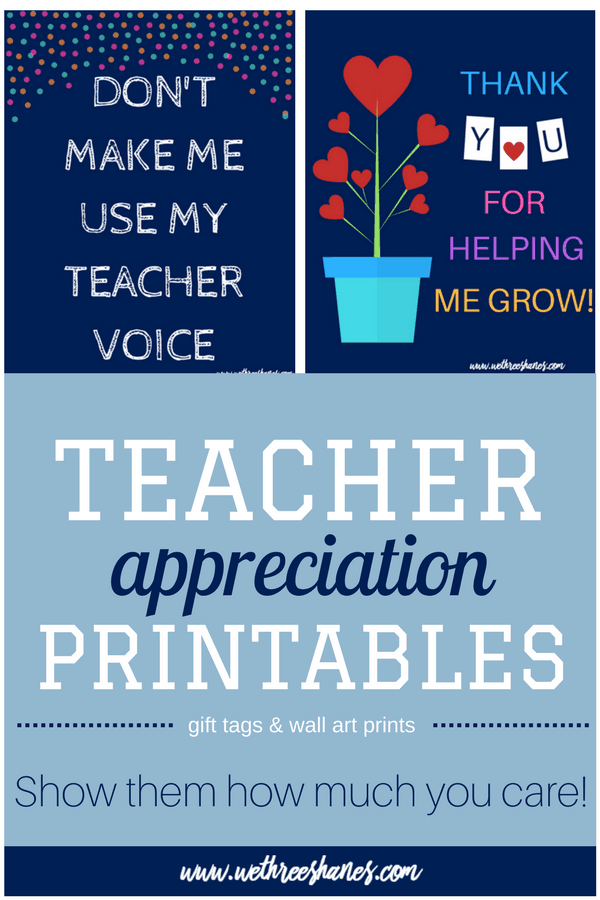 graphic about Printable Teacher Appreciation named Instructor Appreciation Printables We 3 Shanes