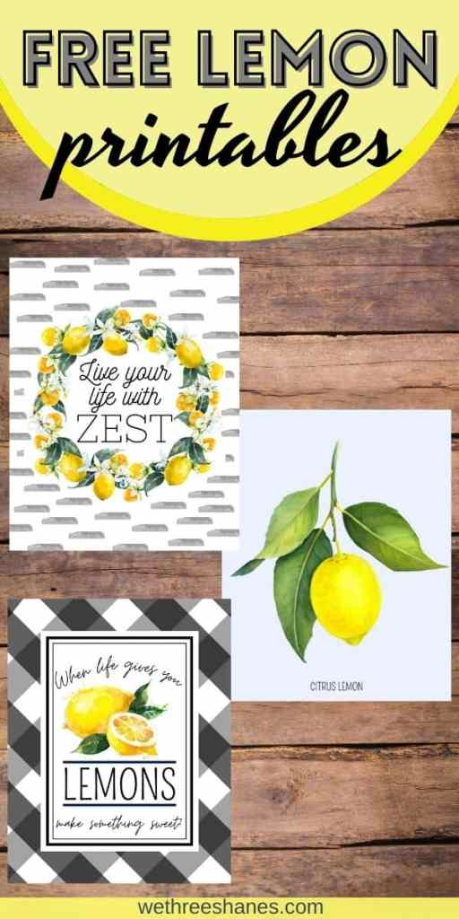 These free lemon art prints are the perfect addition to your home this spring or summer. Three simple farmhouse style designs in two popular frame sizes.