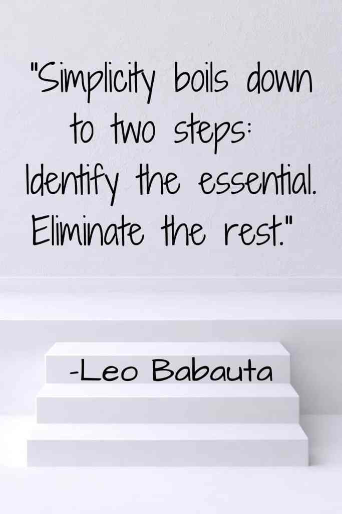 """A quote about simplicity by Leo Babauta, """"Simplicity boils down to two steps: Identify the essential. Eliminate the rest."""""""