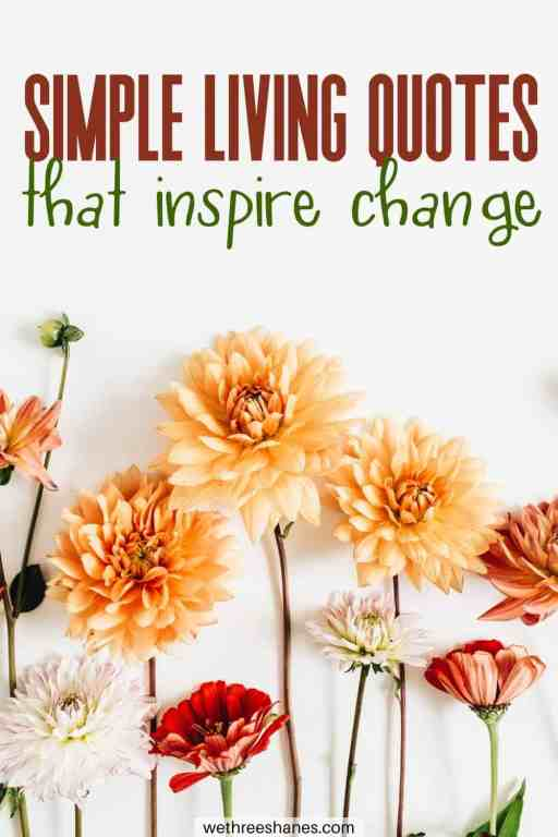 """These Simple Living Quotes will inspire you to slow down and live a more intentional life. """"There is beauty in simplicity."""" 