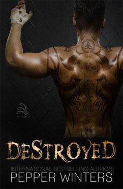 総合評価3: Destroyed
