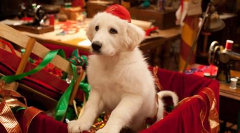 Santa Pfote 2 - Die Weihnachts-Welpen ©2012 Disney