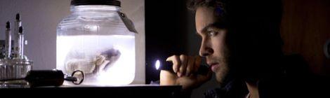 """The Eloise Asylum"" (Universum Film) +++Rezension & Gewinnspiel+++"