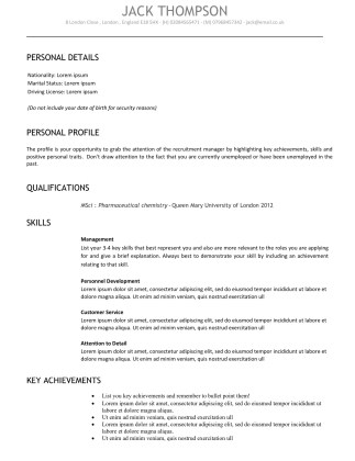 Standard cv template 2 we write cvs standard cv template 2 yelopaper Images