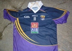 AIB Sponsor Wexford Combined Schools | Official Wexford GAA