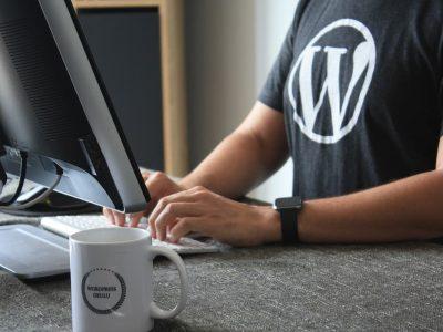 How WordPress Works