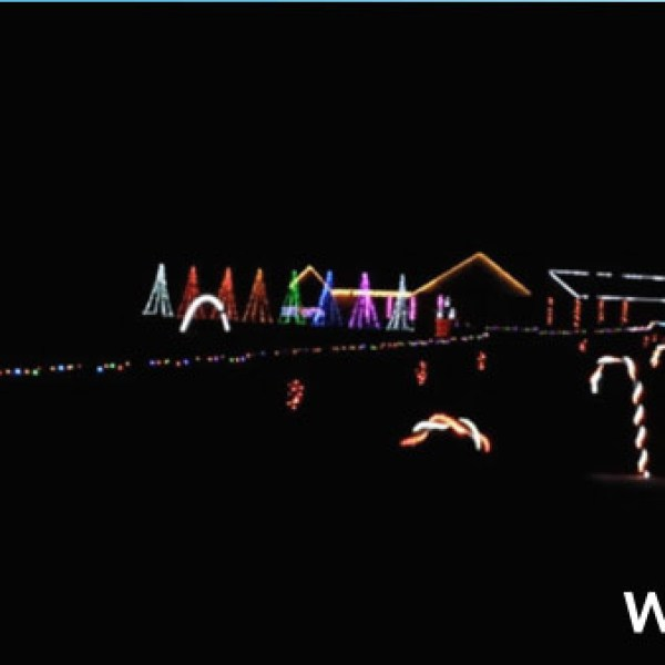 Plant City light display_81195