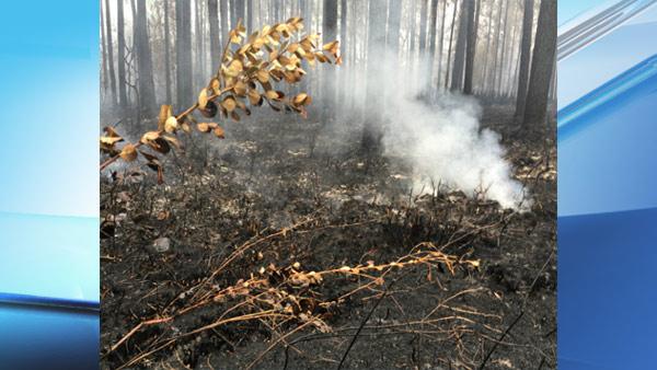 polk-fire2_303319