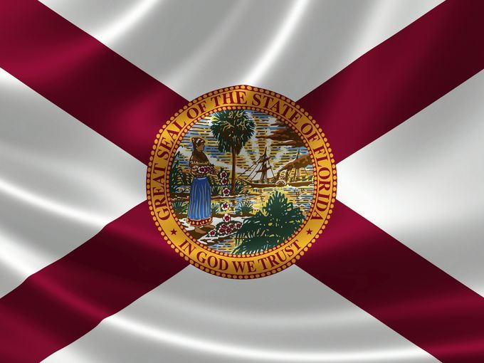 State of Florida flag_266298