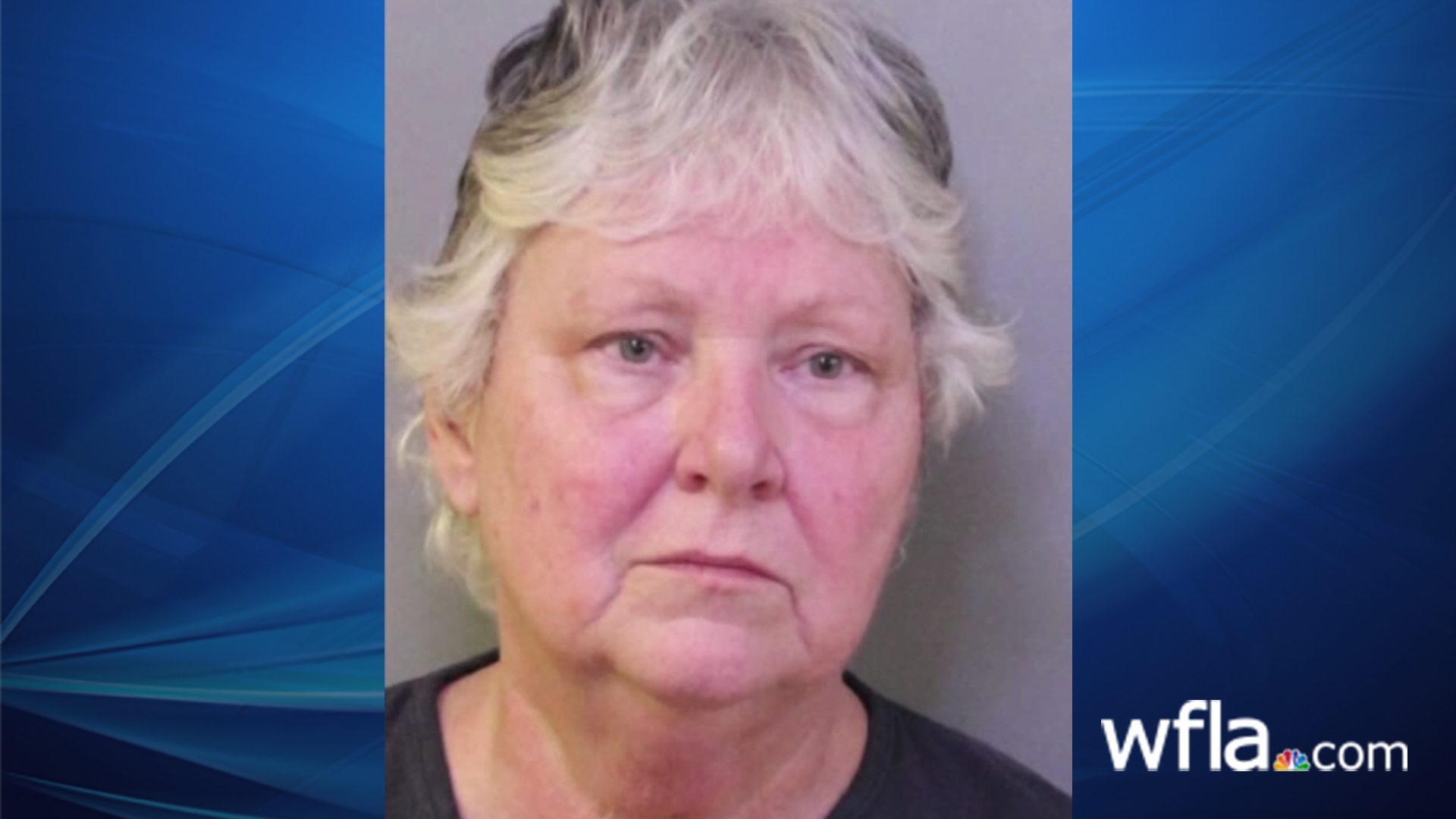 Florida veterinarian convicted of animal cruelty charges