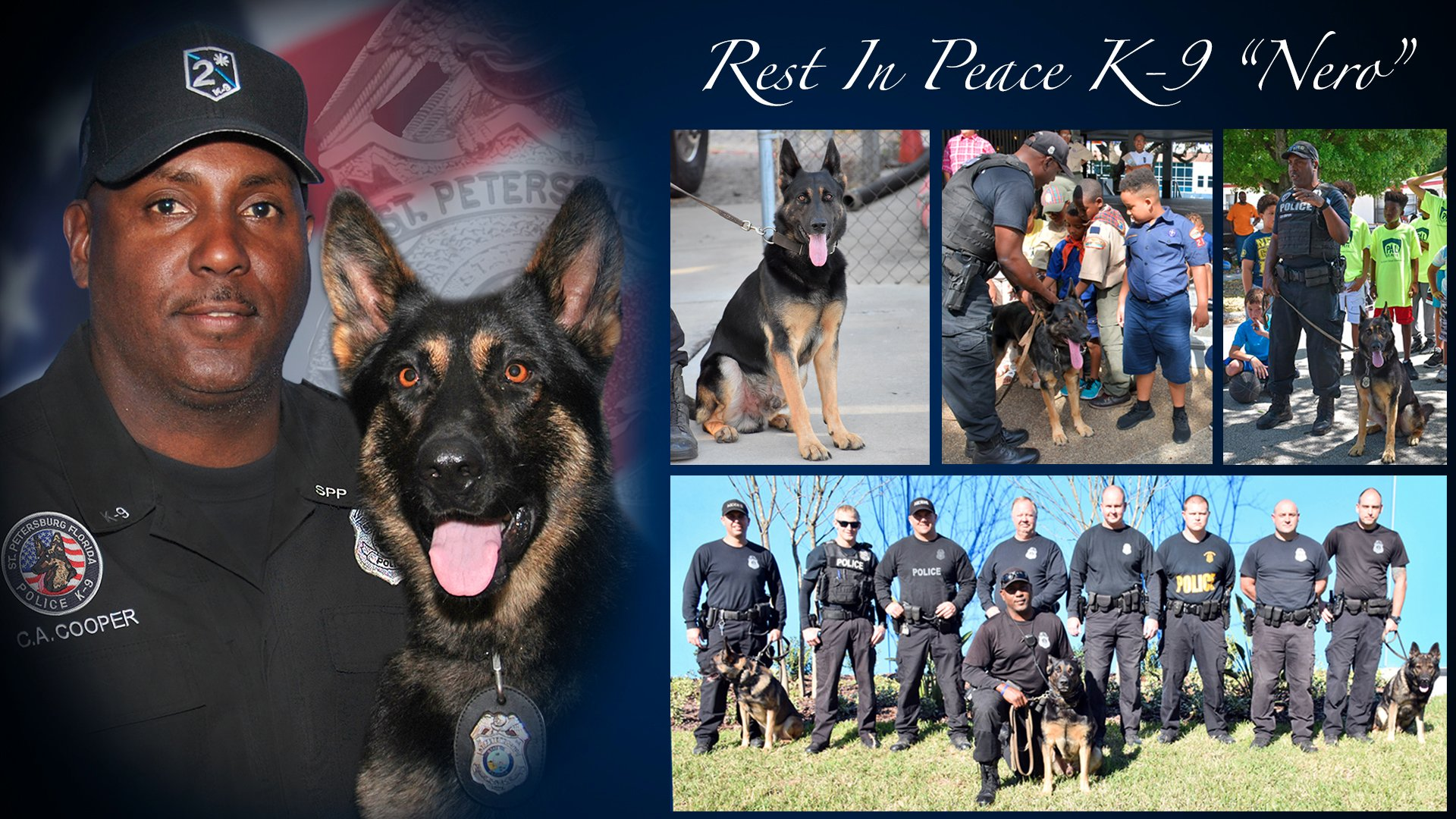 St Petersburg police K-9 dies after years of service | WFLA