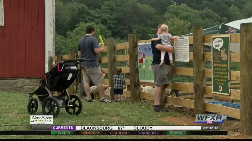 Jeter Farm Fall Festival opens this weekend_09582072-159532